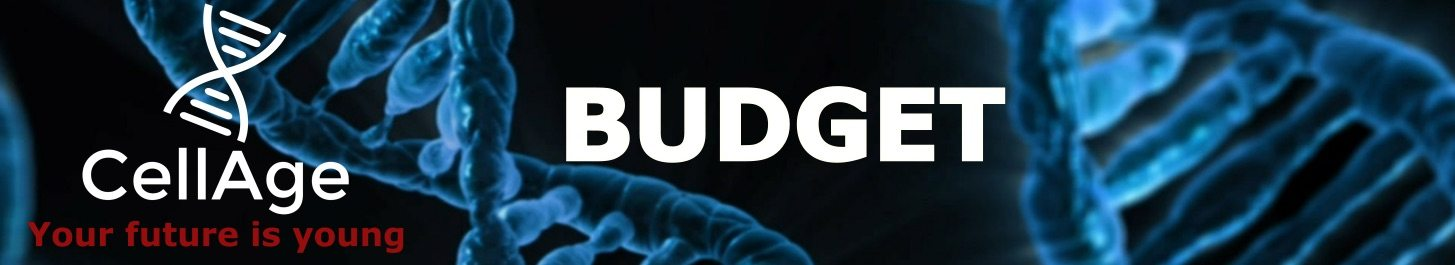 cellage_header_budget