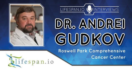 Andrei Gudkov is an aging and cancer researcher.