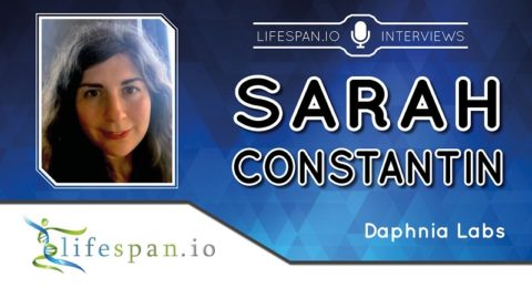 Sarah Constantin Interview