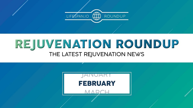 Rejuvenation Roundup February