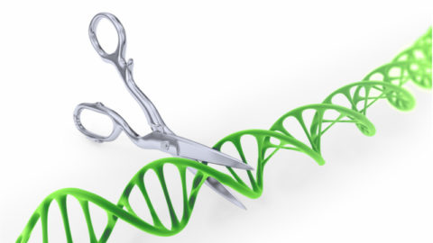 Image of scissors cutting DNA to represent gene editing with CRISPR