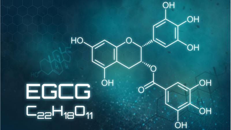 EGCG chemical