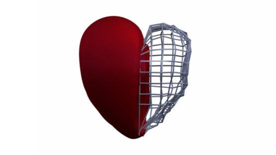 Heart scaffold