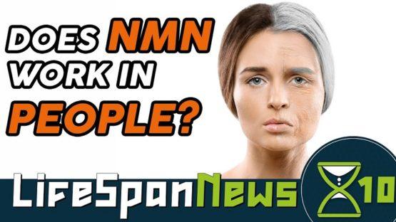 Lifespan News NMN
